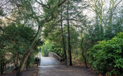 UITWIJKEN-5 – De noordkant van het spoor